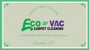 EcoVac Carpet Cleaning Business Card